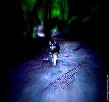 steppenwolf by InsomnianFae