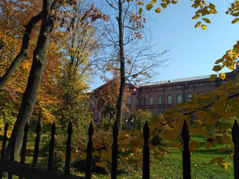 Golden autumn around Red University