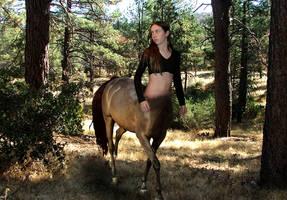 Mountain Centaur by FreshwaterMermaid