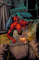 Amazing Spiderman 581 by Summerset