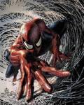 Spectacular Spiderman # 1