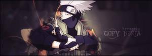copy ninja by hemagoku