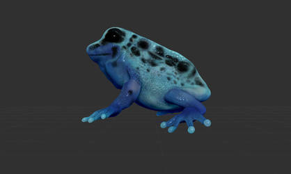 Poison Dart Frog - Intro to Zbrush Polypaint Proj. by pluuck
