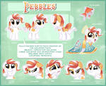 Pebbles Reference Sheet