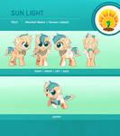 Sun Light Reference Sheet