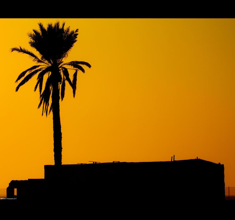 IMAGE: http://fc07.deviantart.net/fs71/i/2011/283/b/6/golden_sky_by_mhyaay-d4chkpp.jpg