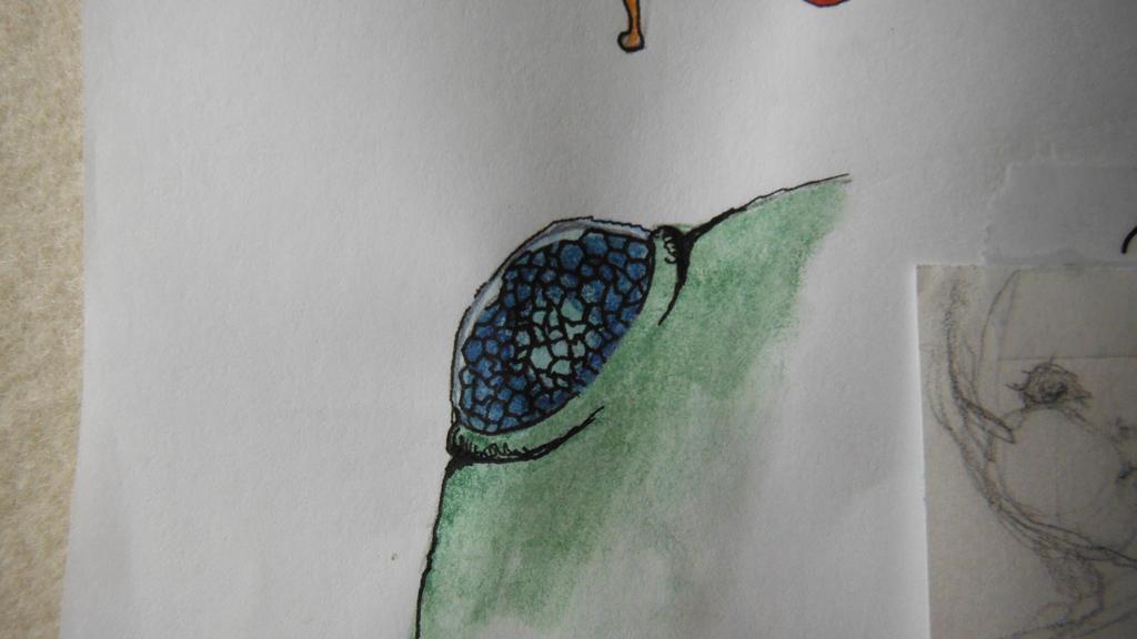 bug eye by dunklesa