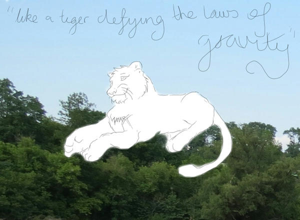 Defying The Laws Of Gravity By Daciandrake On Deviantart