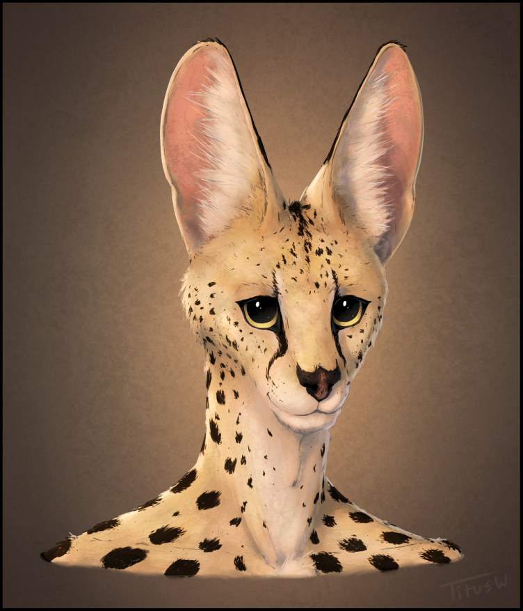 Serval Portrait by TitusW