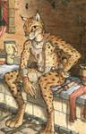 Casual Lynx