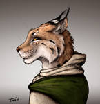 Lynx Experiment