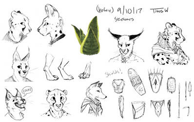 Sketches 9/10/17 by TitusWeiss
