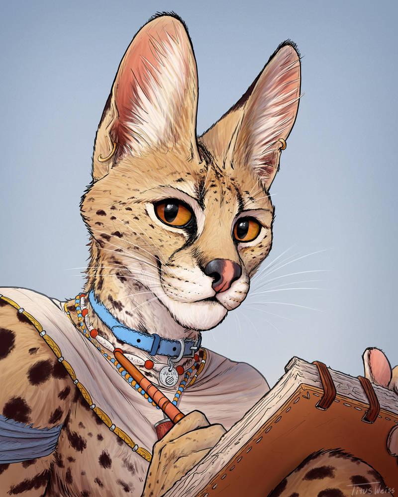 Serval Profile Pic 2020