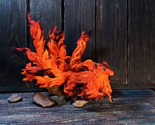 Fire Fox by kessan