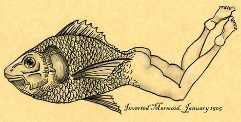Inverted Mermaid