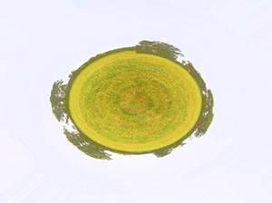 Green Planetoid