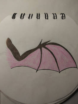 Drawing of A Wing