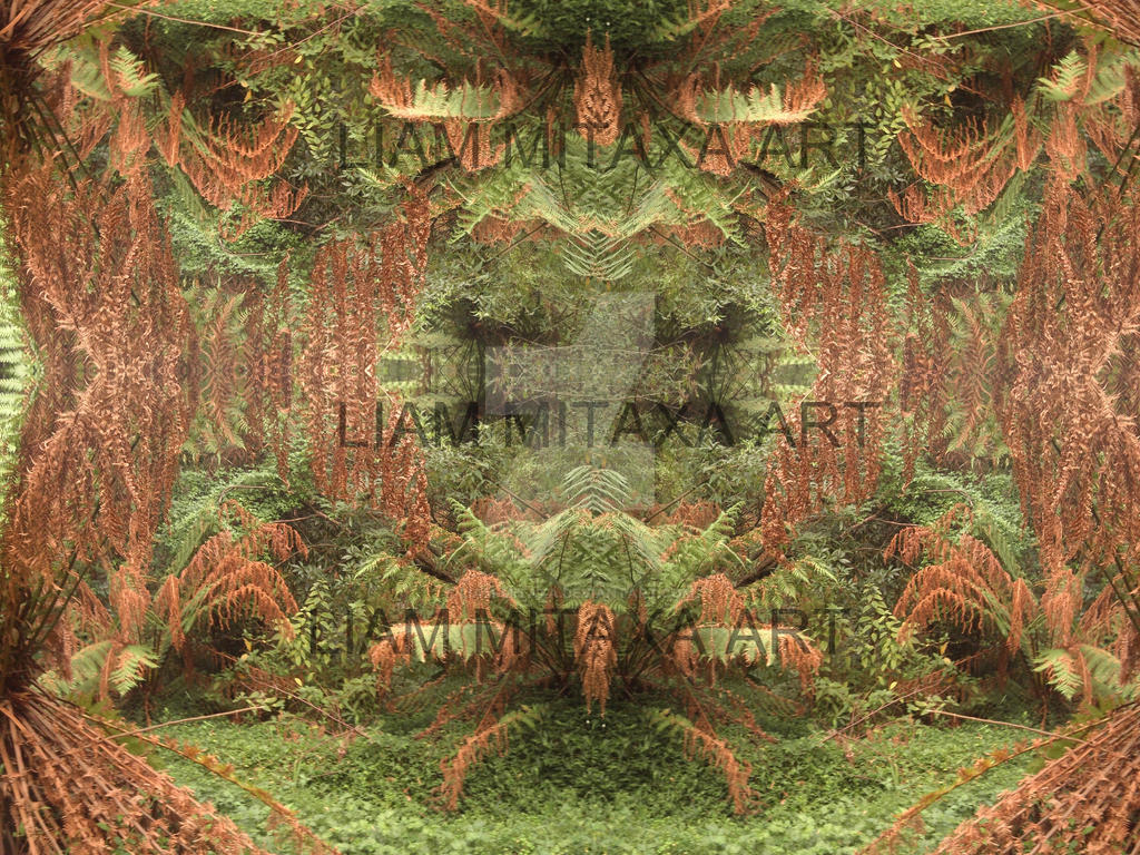 Fern maniulations by Liam-mitaxa