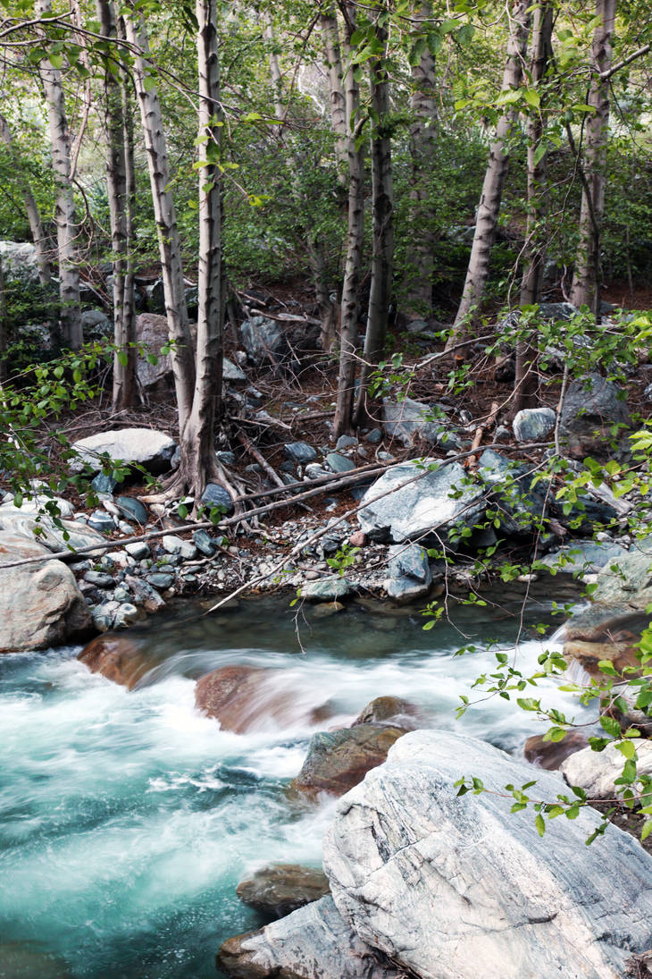 East Fork by smackmeister