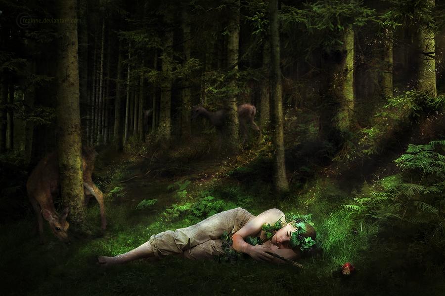 Dreaming by feainne