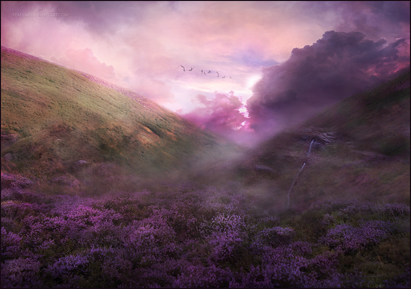 Misty by FenneArts