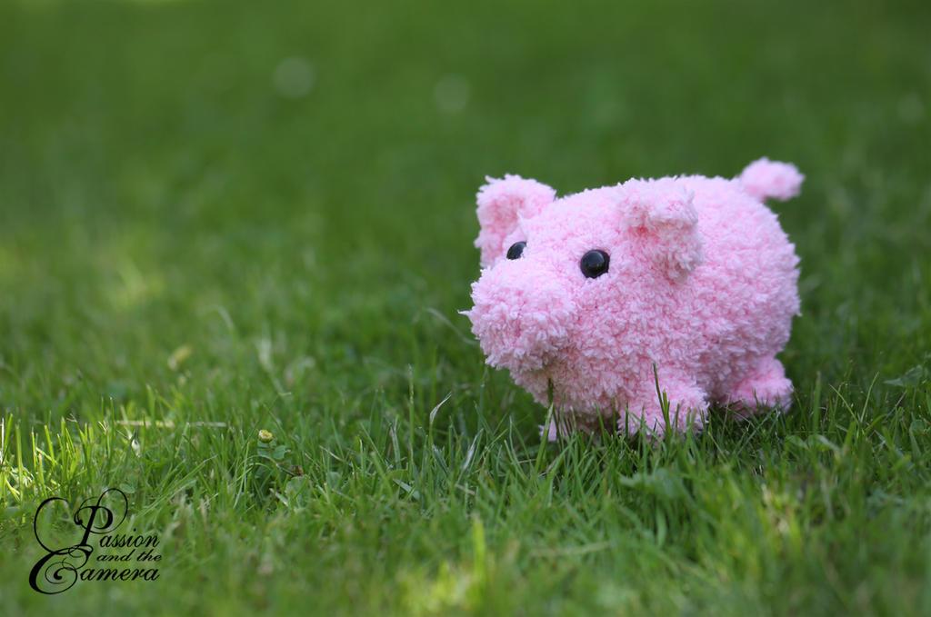Crochet Piggy by PassionAndTheCamera