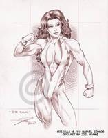 02-02-2010 She Hulk by lilzart