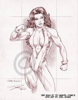 02-02-2010 She Hulk by lilzart
