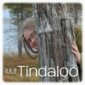 Tindaloo's Profile Picture