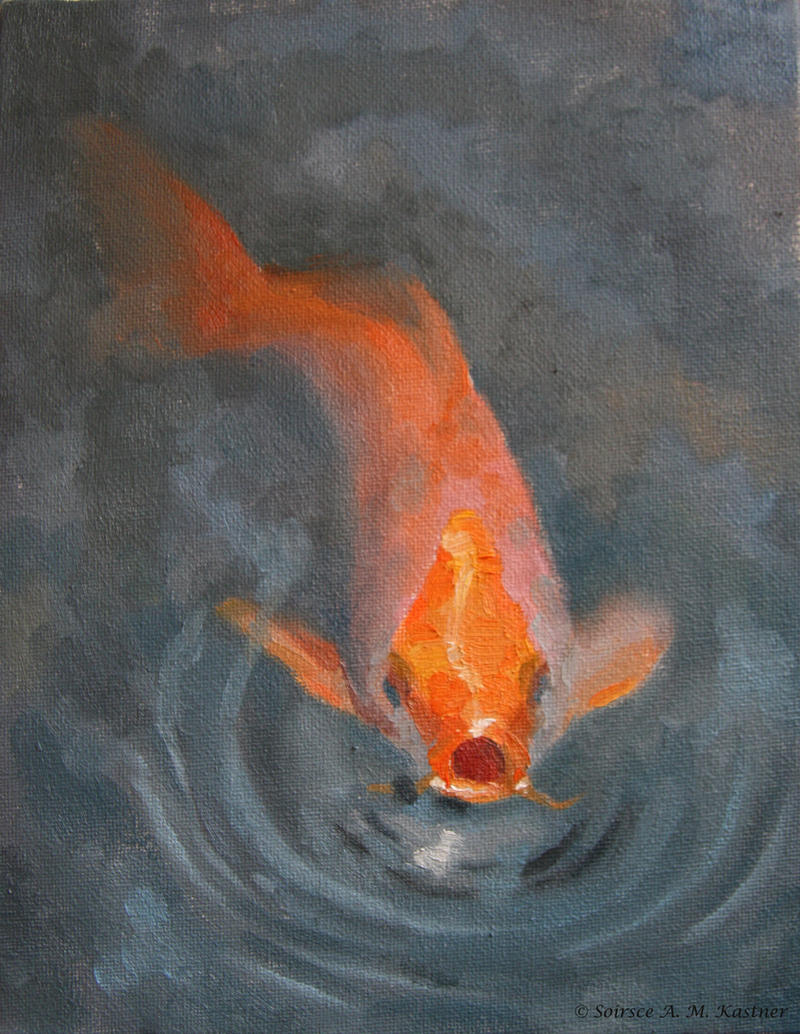 Koi fish by soirsce on deviantart for Koi fish information