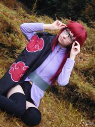 Karin from Taka Team by Vivid-Cosplay