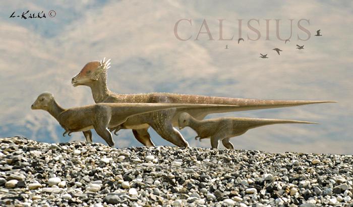 pachycephalosaur migration