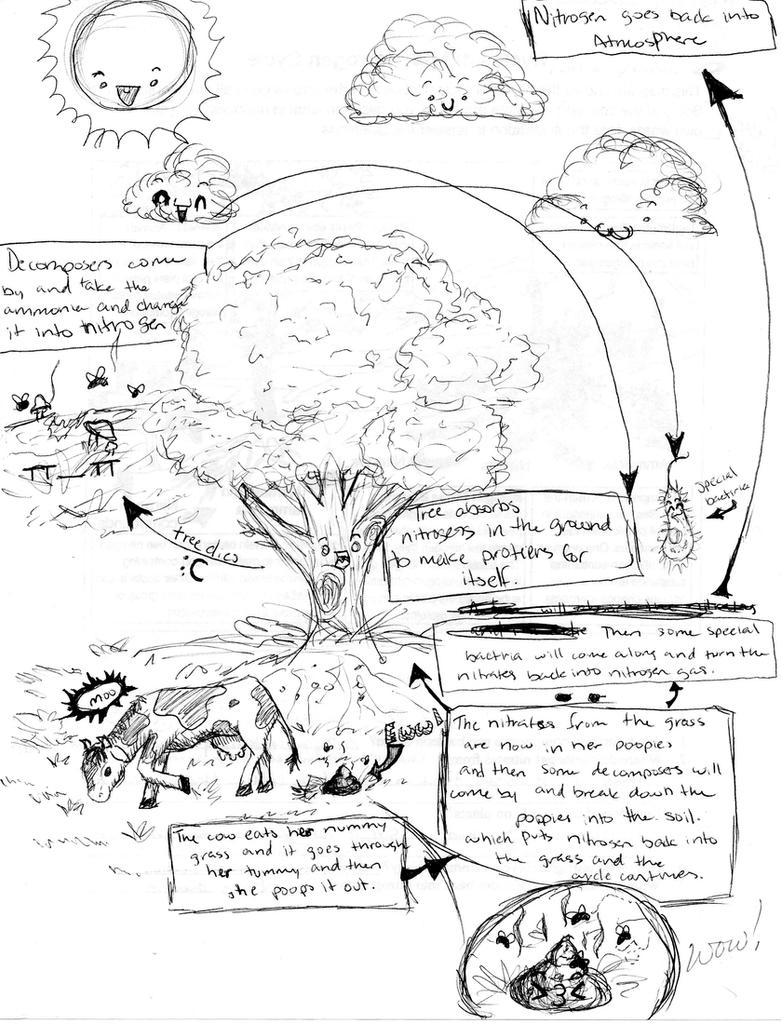 related keywords  u0026 suggestions for nitrogen cycle cartoon