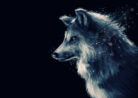 Wolf by Delun