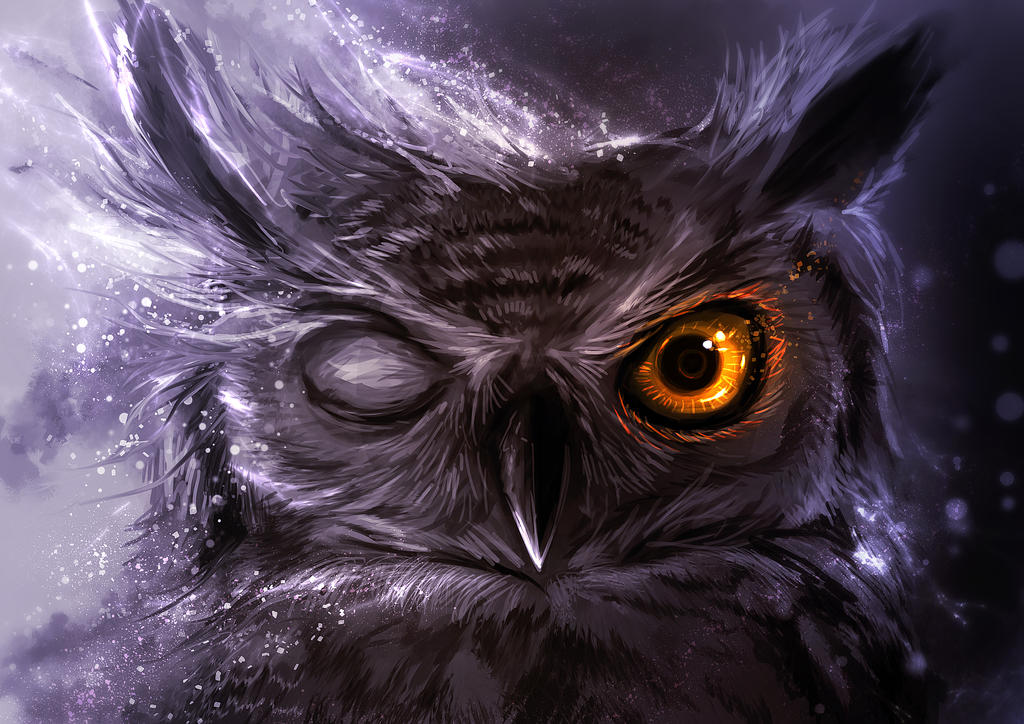 Night Owl by ~Delun