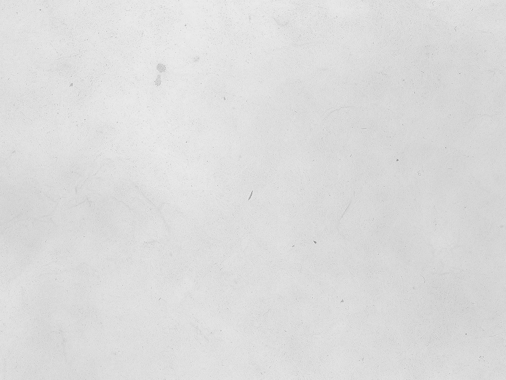 Black+White Texture 01 by diebutterfliege