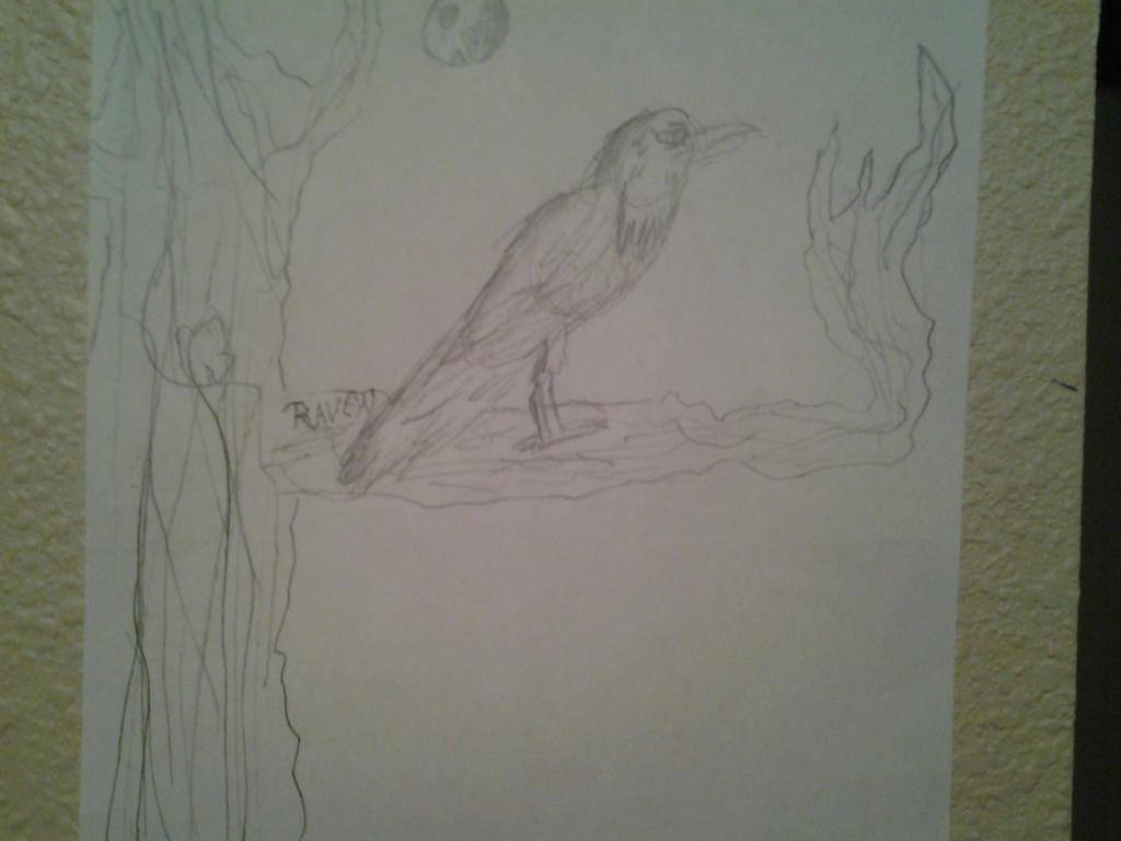 Raven by gamzeh