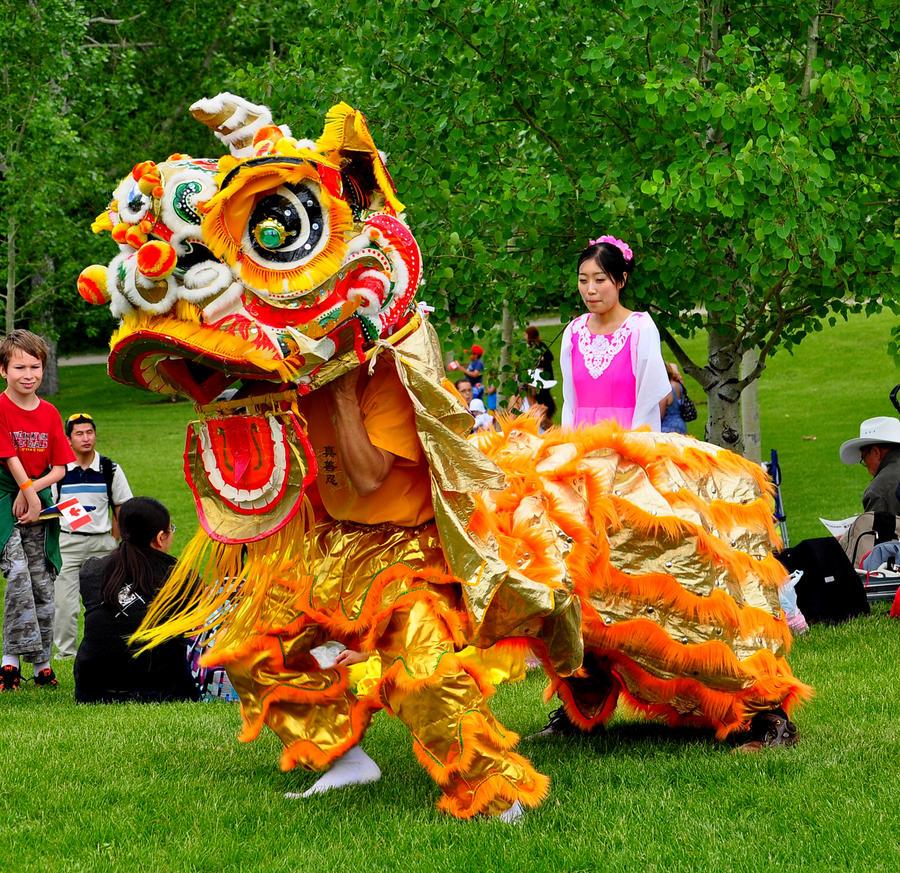 How to breed dragon dance on bagon? : PokeMoonSun