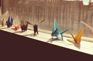 Cranes by hennatea