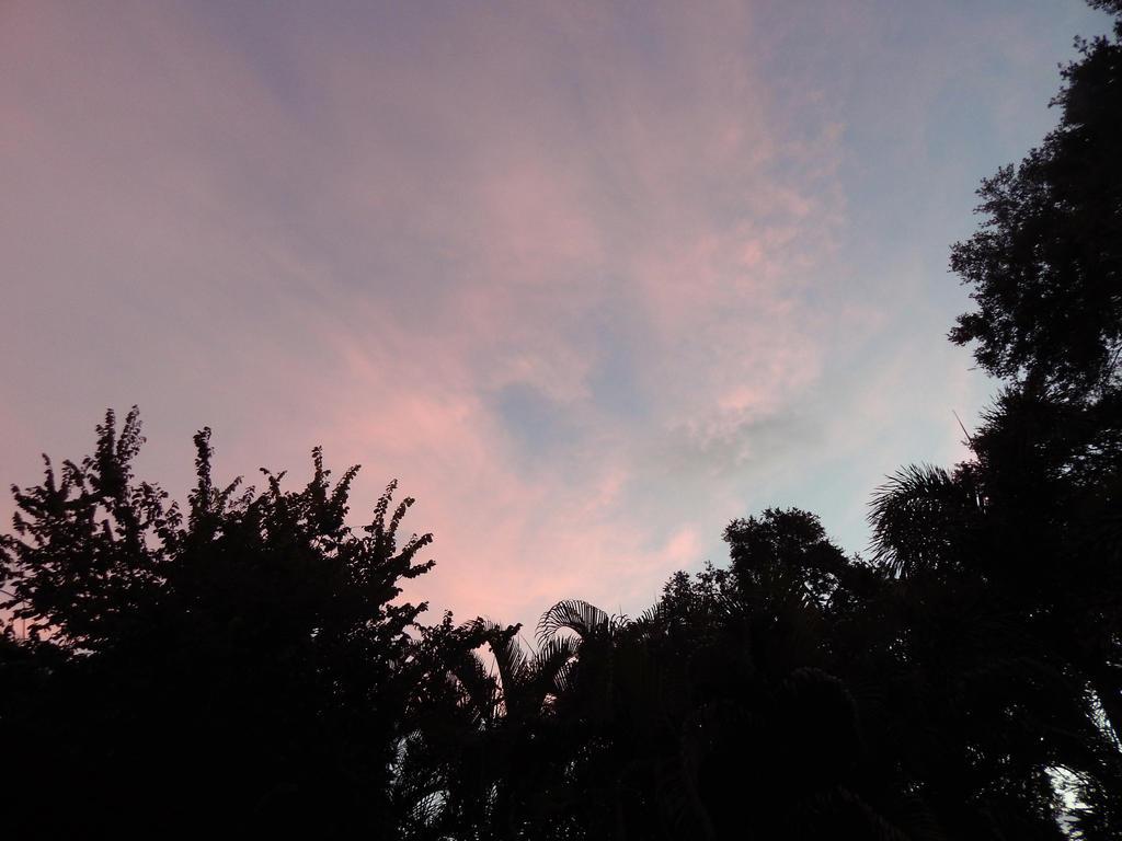 Florida Sunset by metalpug