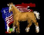 Horse Hetalia: America