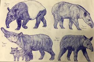 Tapirs by MickeyRayRex