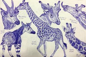 Giraffids by MickeyRayRex