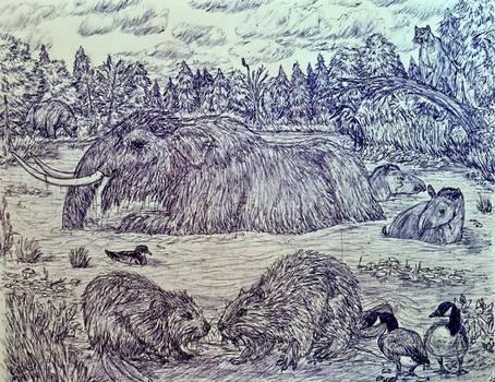 Pleistocene Ohio