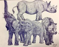Zoo Animals by MickeyRayRex