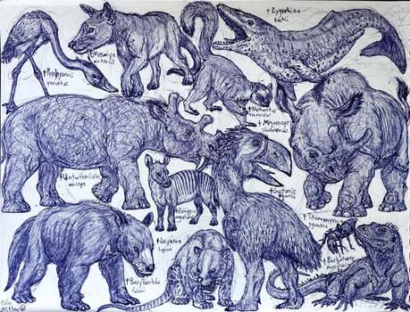 Paleocene and Eocene Animals
