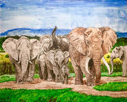 Roaming Herd by MickeyRayRex