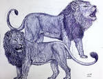 Asiatic and African Lions