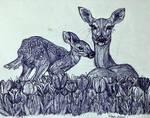Deer resting in tulips