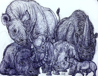 Long Lost Rhinos by MickeyRayRex